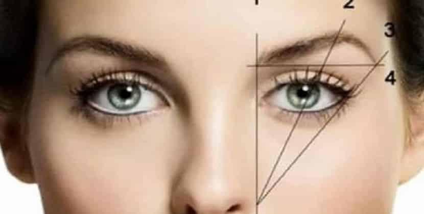 sopracciglia: espressività e armonia del viso